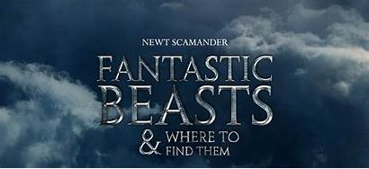 Fantastic Beasts Them Wallpapers Backgrounds