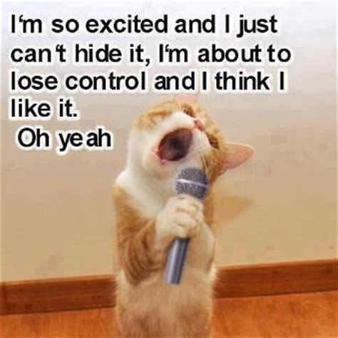 Singing Cat Meme - singing cat jokes memes pictures