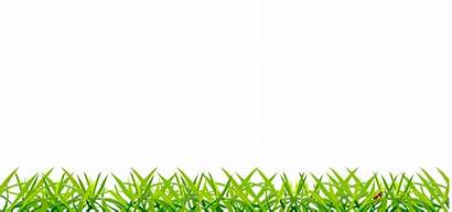 Grass Transparent Animated Animation Backgrounds Google Activity