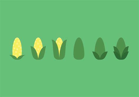 ear of corn vector sequence download free vector art