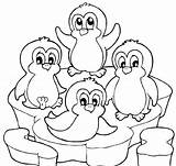 Penguin Coloring Pages Printable sketch template
