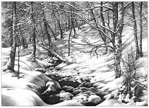 forest interior inspired by Ivan Shishkin works pencil ...