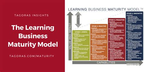 tagoraslearning business maturity model  mature