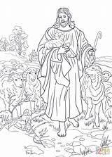 Coloring Shepherd 1145 1600px 86kb sketch template
