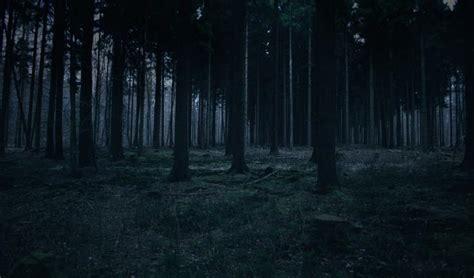 фон темный лес avatan plus