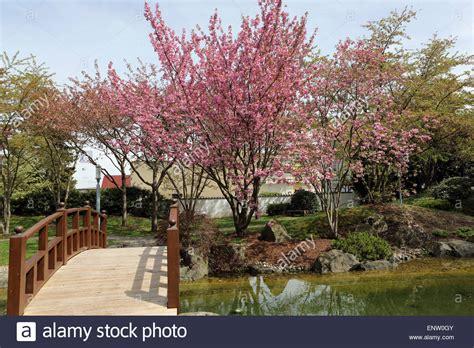 Japanischer Garten Ruhrgebiet by Japanischer Garten Stockfotos Japanischer Garten Bilder