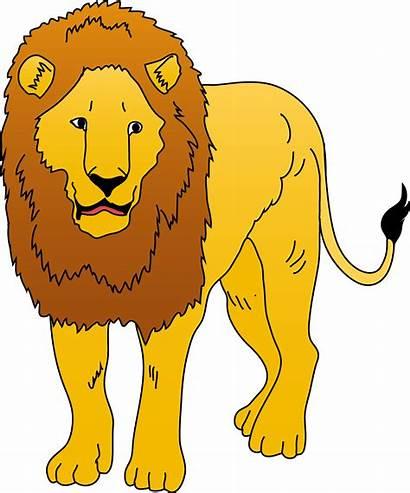 Lion Clipart Clip Animals Clipartion