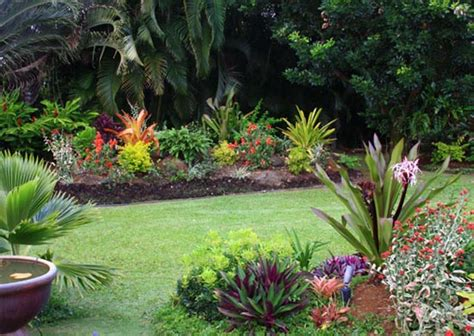 small tropical plants for the garden home and garden design small tropical garden ideas