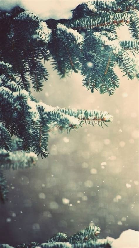 Gold Winter Wallpaper Iphone by 262 Best Iphone Wallpaper Images On Iphone