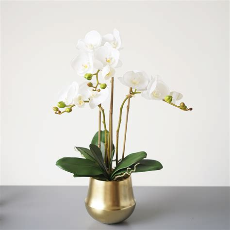 Gold Vase by Faux White Butterfly Orchids In Gold Vase Medablooms