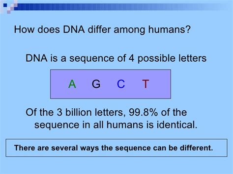 what do the letters dna stand for what the letters dna stand for docoments ojazlink