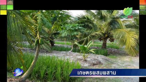รอบรู้ข่าวเกษตร15 เกษตรผสมผสาน - YouTube