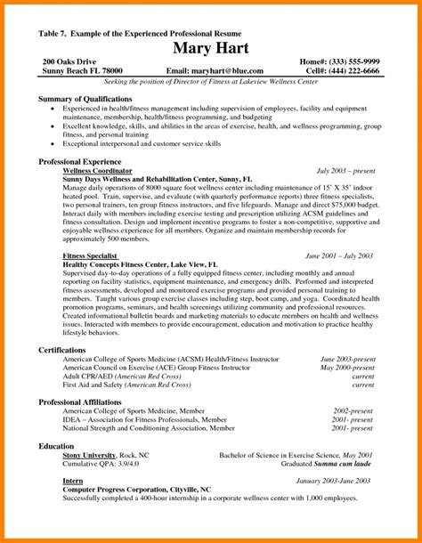 Cv Format For Experienced by 9 Cv Template Experienced Professional Theorynpractice