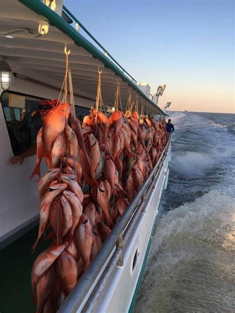 Galveston Party Boats Fishing by Galveston Party Boats Inc