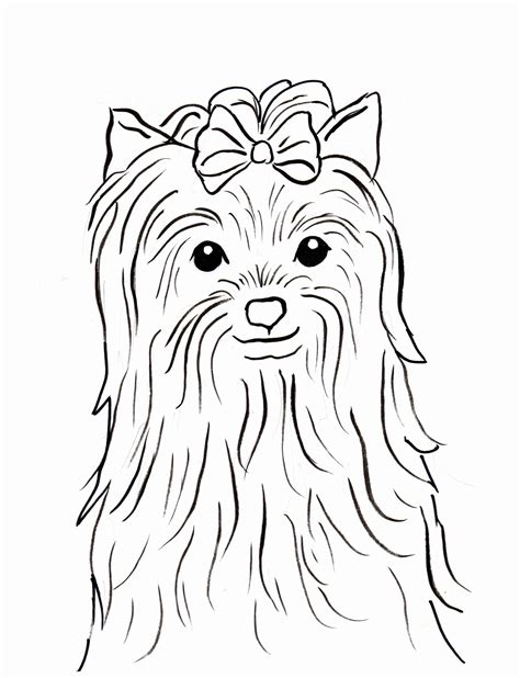 yorkie dog coloring pages  getcoloringscom