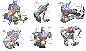 Building Back Muscles  U2013 3 Mass Building Back Exercises