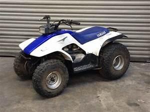 Quad 125 Yamaha : yamaha breeze 125cc atv quad bike white in chelmsford ~ Nature-et-papiers.com Idées de Décoration