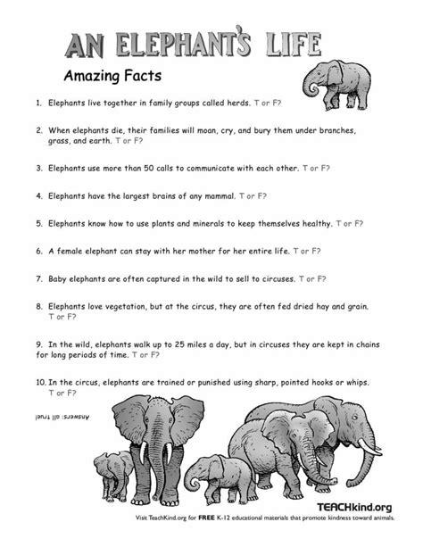 an elephant s peta 121 | elephant LessonPlan page 001 791x1024