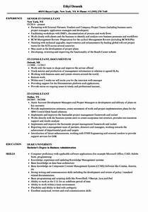 it consultant resume samples velvet jobs With netsuite consultant resume