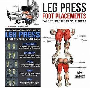 How To Leg Press Foot Placements