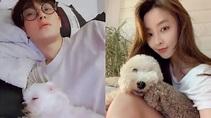 「鄭柔美穩交安七炫」同樣是明星粉絲變情人! | 亞洲黑客集團