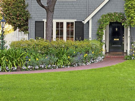 copy the california curb appeal landscaping ideas and
