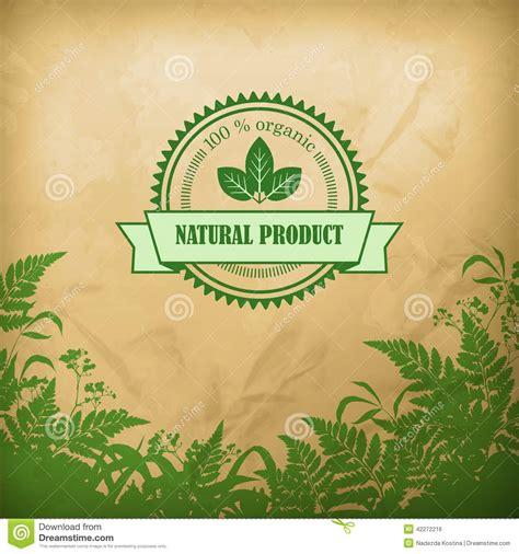 natural organic herbal vector composition stock vector
