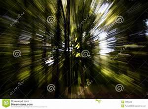 Zoom Into A Forest With High Speed Textured Background ...