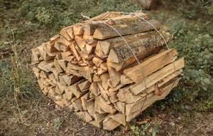 Welches Holz Zum Schnitzen : welches holz ben tige ich zum heizen brennholz k ferlein ~ Orissabook.com Haus und Dekorationen