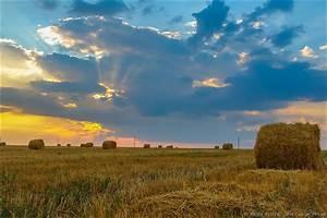 one summer day near berdyansk ukraine travel
