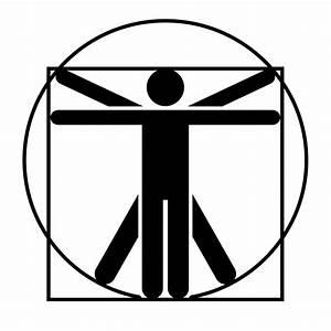 File:Vitruvian Man Noun project 6674.svg - Wikimedia Commons