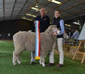 Day Three Royal Canberra Show highlights   Photos   The Land