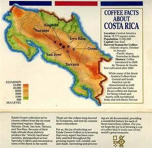 How We Roast the Perfect Coffee - Sun Burst Coffee