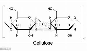 The Structural Formula Of Cellulose Polymer Stock Vector