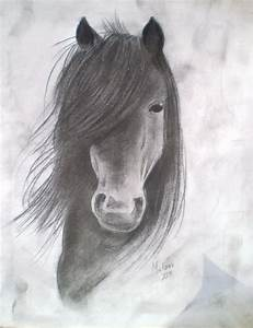 78 Best images about Drawings of horses/wolves on ...