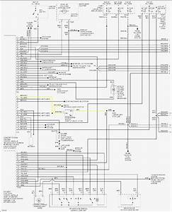Vw Passat B5 Ccm Wiring Diagram