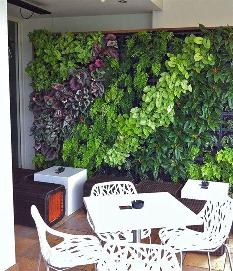 Vertical Garden Design Diy by Vertical Gardens Sydney Green Walls Growing Well Garden