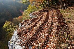 Nature paprique island for Pine cone land art from sylvain meyer