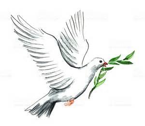 Peace Dove Illustration