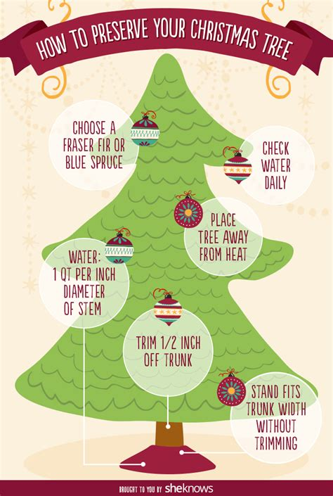 how to keep your christmas tree fresh and fragrant through