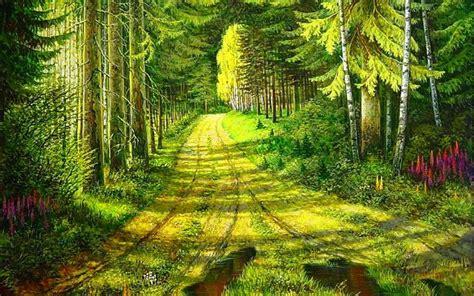 Beautiful Forest Wallpaper Wallpapersafari