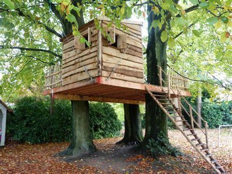 comment fabriquer une le les 25 meilleures id 233 es concernant cabanes dans les arbres sur forts construits dans