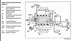 W210 E55 Vacuum Diagram