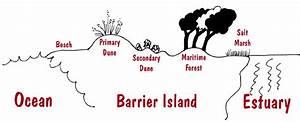A Barrier Island