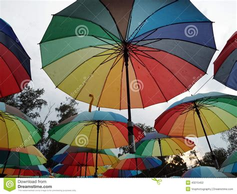 colorful umbrellas stock photo image 43215452