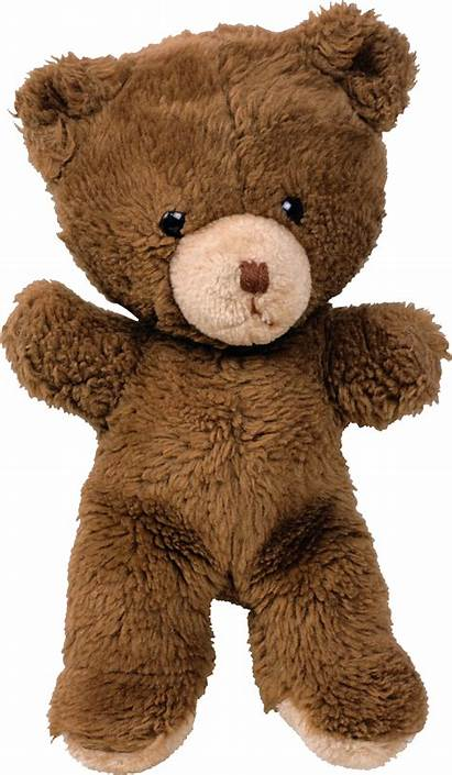 Bear Teddy Toy Transparent Background Brown Plush