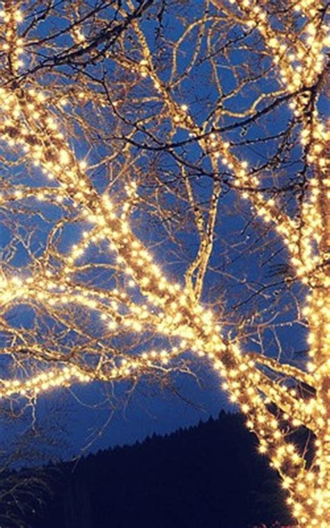 how to wrap christmas lights 20 brilliant ideas for modern kitchen lighting certified