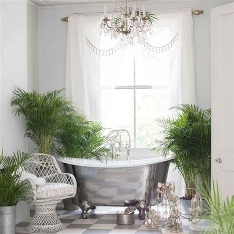 plants for bathroom without windows grow tropical indoor plants the garden glove