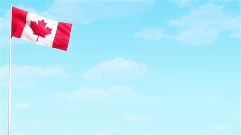 canada day animation hd video stock footage video