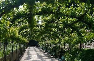 Les Plus Beaux Arbres Pour Le Jardin : 7 lieux et activit s romantiques paris un jour de plus ~ Premium-room.com Idées de Décoration